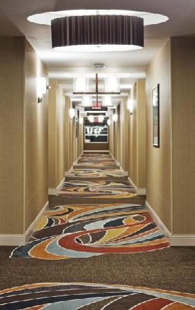 Hilton Omaha: Newly renovated hallway