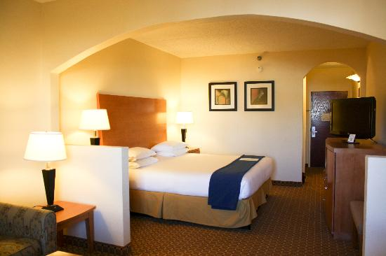 Holiday Inn Express Greer Taylors: King Suite