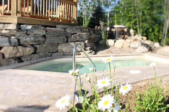Spa et Chalets Natur'Eau: Bain extérieur