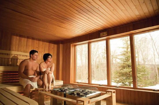 Spa et Chalets Natur'Eau: Sauna finlandais
