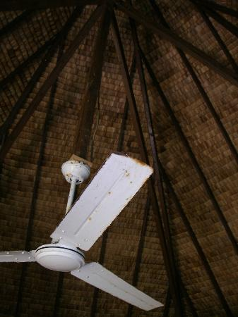 Blue Heaven Island lodge: Ceiling fan