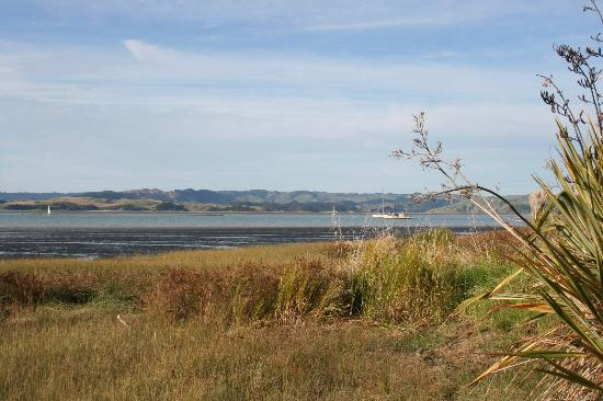 Kawhia Beachside S-Cape Holiday Park: view from front of cottage looking West