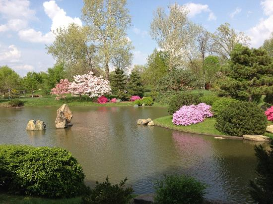 View From Tea House Island Japanese Garden Picture Of Missouri Botanical Garden Saint Louis