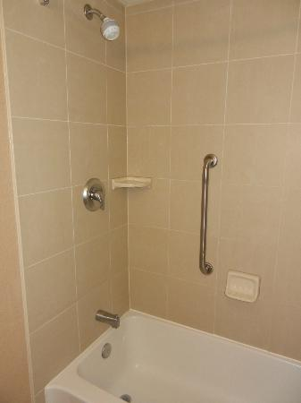 Hampton Inn Sudbury: bathtub