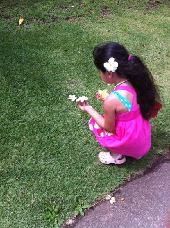 Kalani Hawaii Private Lodging: my Keiki Ary enjoying the flora in the gardens