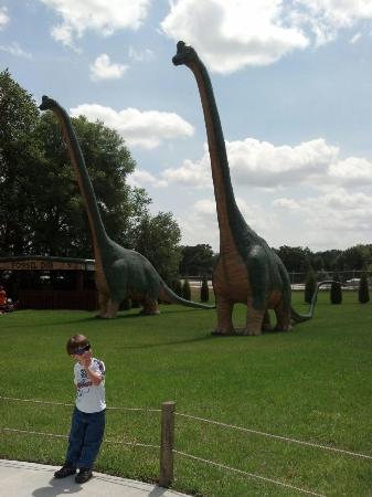 Vegetarian Dinos Picture Of Dinosaur World Plant City Tripadvisor