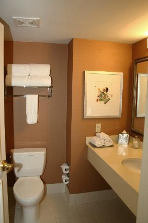 Hilton Alexandria Old Town: Bathroom in room 618