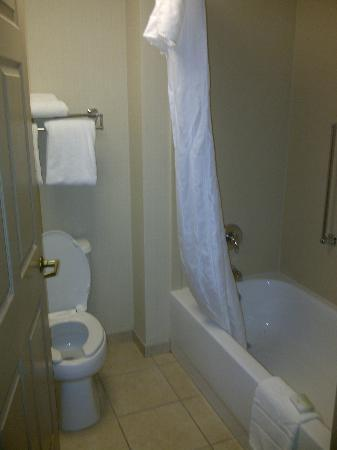 Homewood Suites by Hilton Philadelphia Great Valley: Bathroom Area