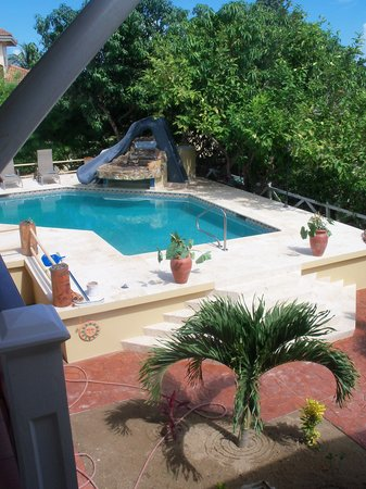 Caribbean Shores Bed & Breakfast: Fabulous pool, waterfall, slide and jacuzzi