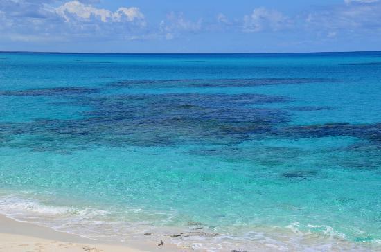 North beach on Salt Cay