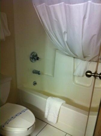 Baymont Inn & Suites Delaware : Bathroom