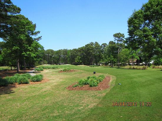 Indian Wells Golf Club: well kept