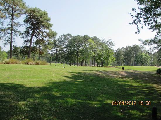 Indian Wells Golf Club: quiet, lush
