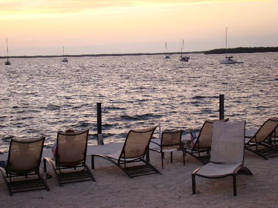 Hampton Inn Key Largo: Vista de la Bahia desde playa