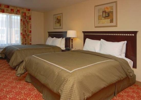 Comfort Suites Vacaville: Guest Room
