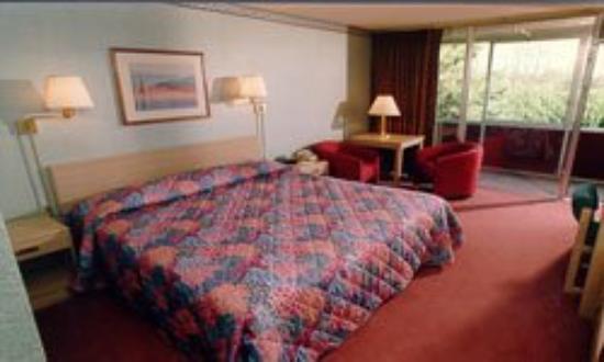 Ramada Inn Eugene: Guest Room