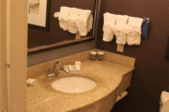 Hilton Garden Inn Jonesboro: Bathroom