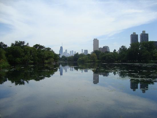 Lincoln Park: View over North Pond