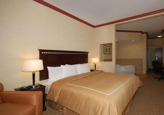 Comfort Suites Central: Guest Room -OpenTravel Alliance - Guest Room-