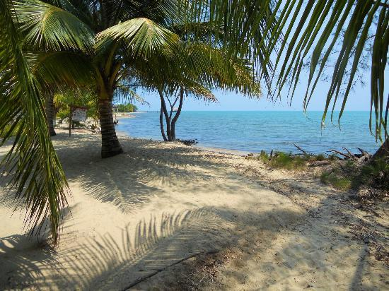 Casa Placencia Belize: The beach across from Casa Placencia.