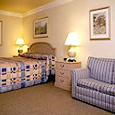 Executive Inn & Suites Vacaville: Guest Room