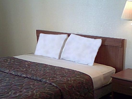 Passport Inn Suites Columbus: Guest Room