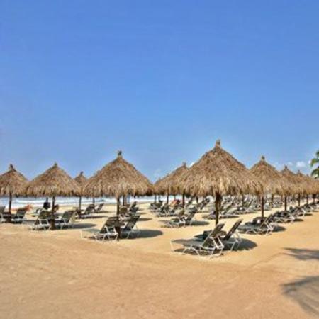 Paradise Village Beach Resort & Spa : Beach