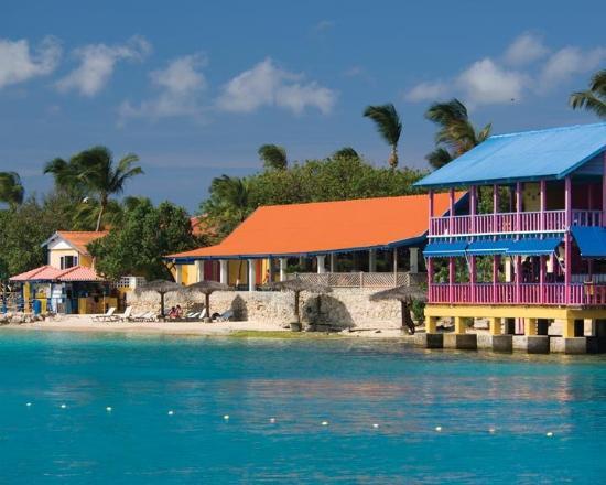 Divi Flamingo Beach Resort and Casino : Exterior