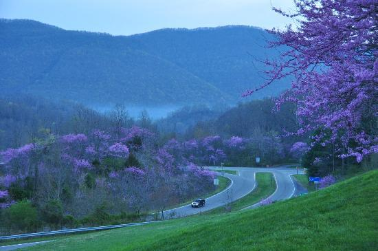 Early morning view of the Appalachians from the Comfort Inn parking lot.