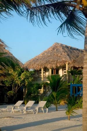 Exotic Caye Beach Resort: Deluxe Exterior