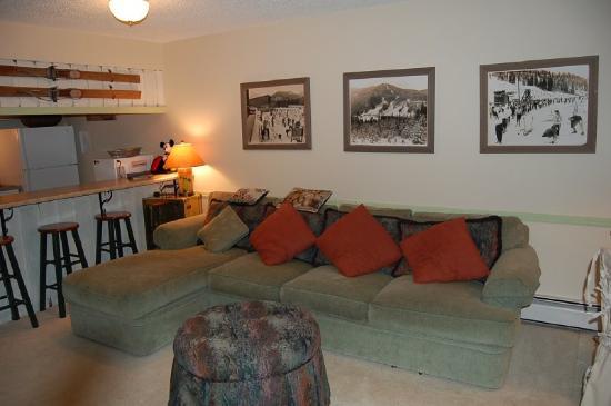 Meadow Ridge Resort: Sample 1 bedroom living room photo