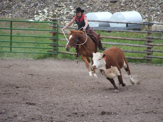 Rocking Z Guest Ranch: Matilda And Rocky