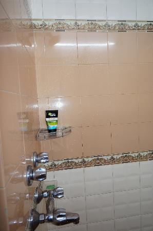 Hotel Buddha: Shower