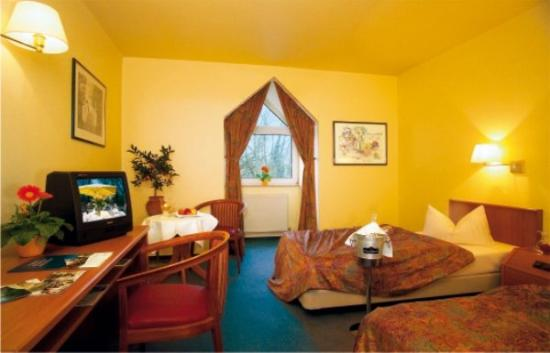 Hotel am Lunik Park: Room