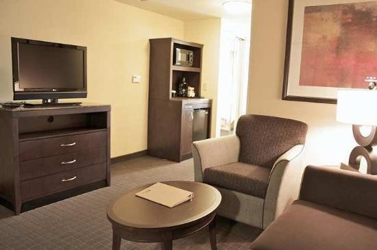Hilton Garden Inn Lynchburg: Suite