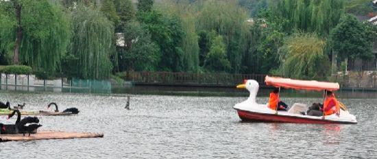 ฮางโจว์ ซานนาดู รีสอร์ท: boat
