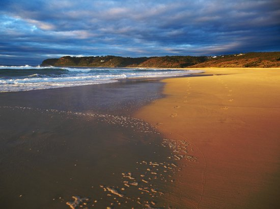 Newcastle, Avustralya: Sunrise at Dudley Beach
