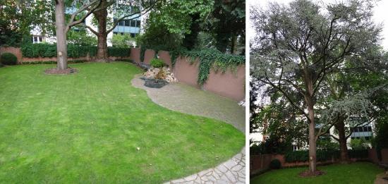 Hotel Villa Achenbach: Garden