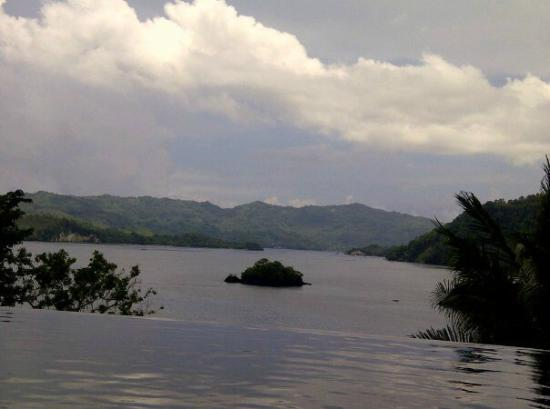 DABIRAHE Dive, Spa and Leisure Resort (Lembeh): view from the pool