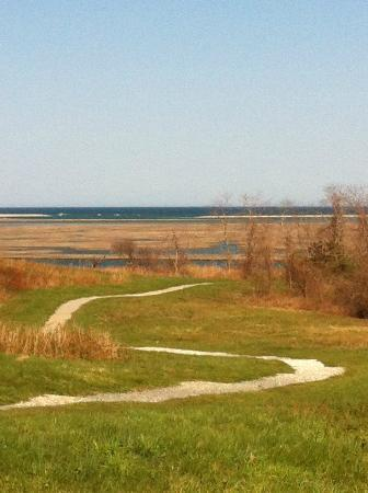 Fort Hill Bed and Breakfast: view of the marsh and the Atlantic from path on Fort Hill