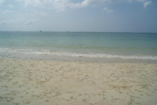 Nakamanda Resort & Spa: Beach outside the resort