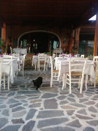 Cala Ginepro, Itália: Veranda