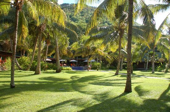 Villaggio immerso in un giardino tropicale foto di - Giardino tropicale ...