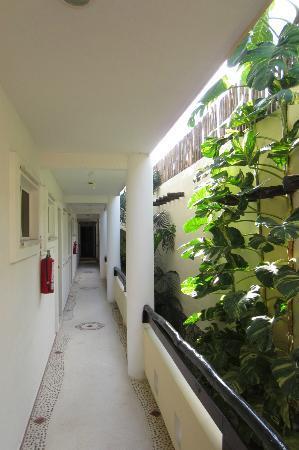 Posada Luna del Sur: Hallway