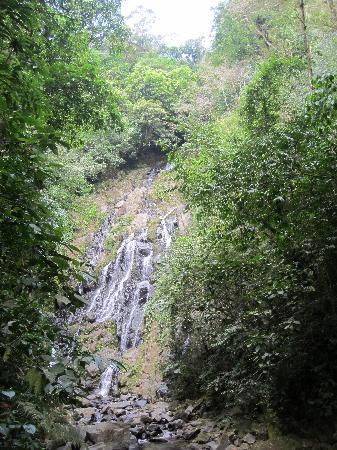 El Chorro Macho Falls