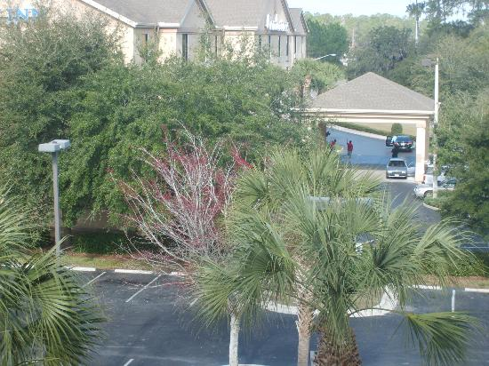 Red Roof Plus+ Gainesville: Very well landscaped