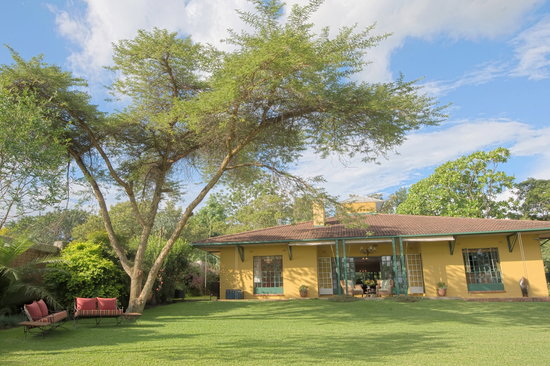 Jacana Gardens Guest Lodge: Jacan Gardens Guest Lodge:  small-scale  B&B in Harare for best price in town !