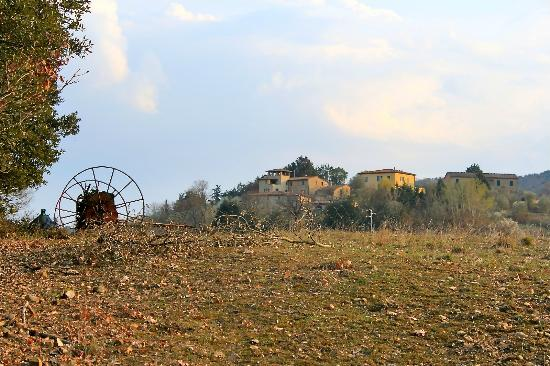 Agriturismo La Busca: The accommodation and grounds