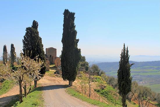 Agriturismo La Busca: The Neighbour