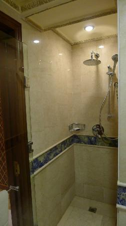 InterContinental Dar Al Tawhid: Walk in shower